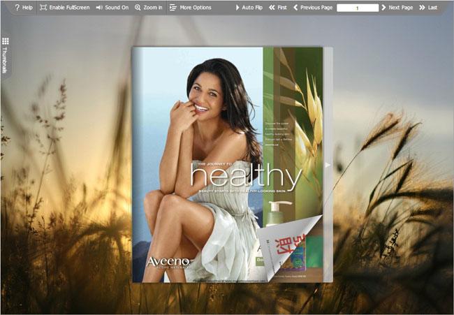 Flipbook Creator - professional pdf to flash creator